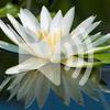 6. Санкиртан медитация