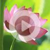 3. Медитация с чётками (ВИДЕО)