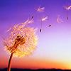 2. Материальный ум и духовное понимание