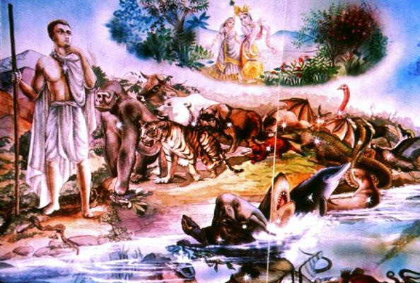 Примерно четверть, всех живых существ населяет материальный мир