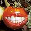 10. Вегетарианская пища должна быть полезной