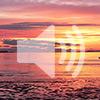 5. Нам нужно духовное счастье (видео без перевода)