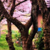 4. Медитация Горанга (ВИДЕО)