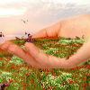 3. Наша вечная природа быть счастливым